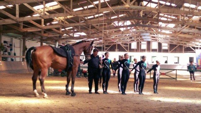 Das erste Volti-Turnier für unser Pferd